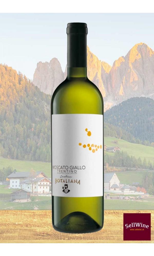 SellWine-Cantina Rotaliana Moscato Giallo Trentino DOC 2016