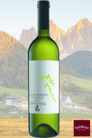 SellWine / Cantina Rotaliana Müller Thurgau Trentino DOC 2018