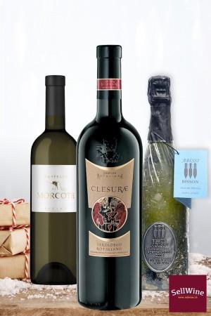 selezione top wines