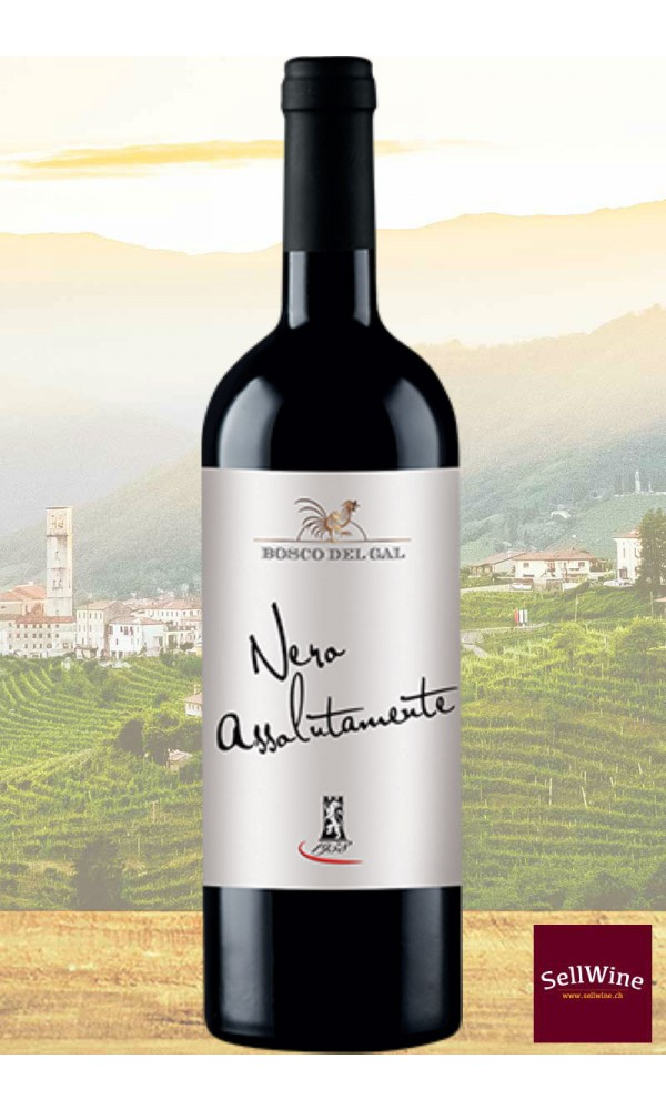 Sellwine-Cantina Castelnuovo del Garda Bosco Del Gal Nero Assolutamente Merlot Veneto IGT 2013