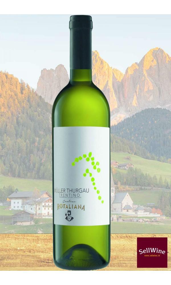 SellWine / Cantina Rotaliana Müller Thurgau Trentino DOC 2017