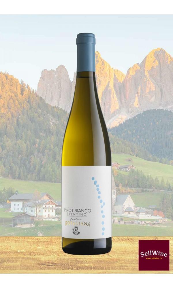 SellWine-Cantina Rotaliana Pinot Bianco Trentino DOC 2017