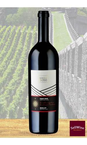 CAGI e Caves de la Béroche Nord Sud 50 50 Merlot e Pinot nero Barricato Svizzera IGT 2014