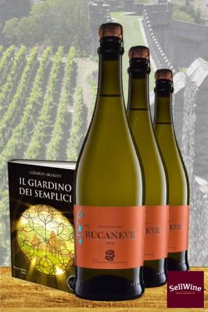 SellWine Geschenkidee Spumante Brut Bucaneve Bianco 2017 und das Buch Il Giardino dei Semplici