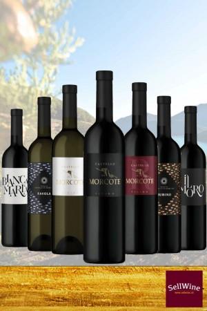 SellWine / Tenuta Castello di Morcote / L'intera selezione di vini